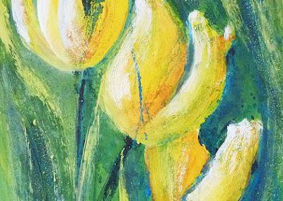 gelbe Tulpen 40x50