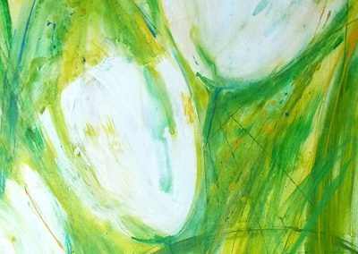 weiße Tulpen 40x50