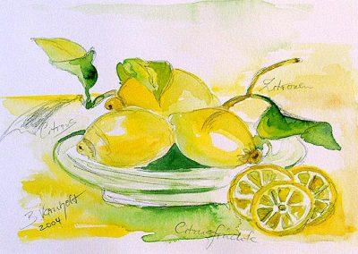 citrosfruechte